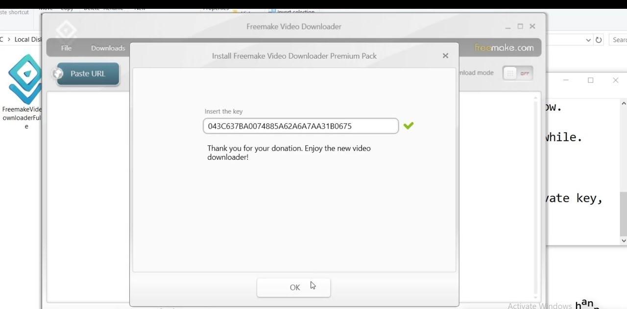 Freemake Video Downloader Key